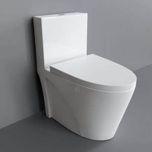 toilet v2692